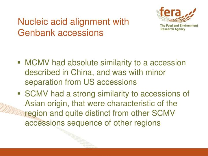 Nucleic acid alignment with Genbank accessions