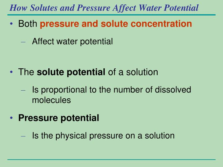How Solutes and Pressure Affect Water Potential