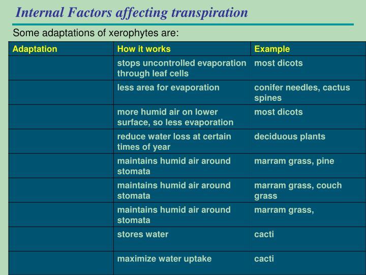Internal Factors affecting transpiration
