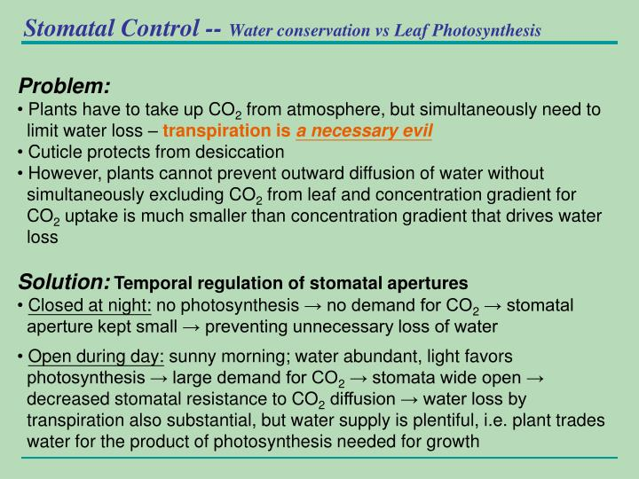 Stomatal Control --