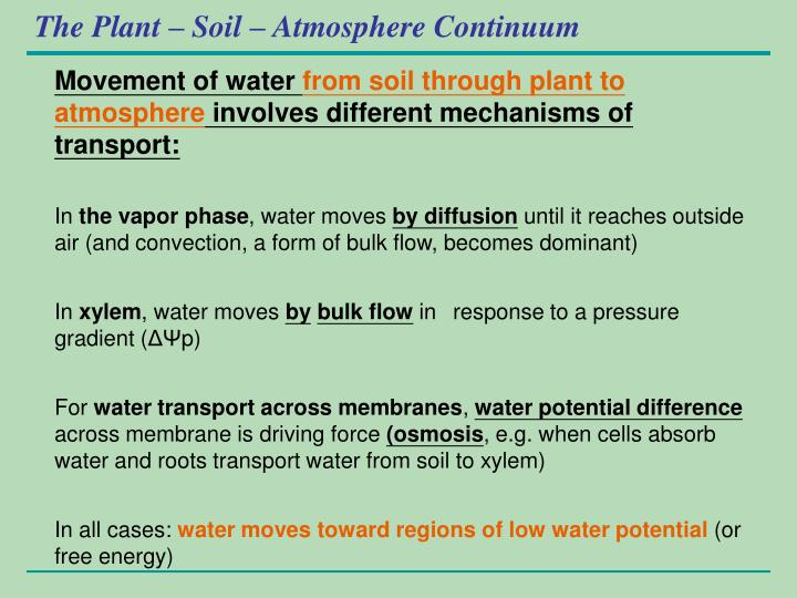 The Plant – Soil – Atmosphere Continuum