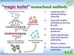 magic bullet monoclonal antibody