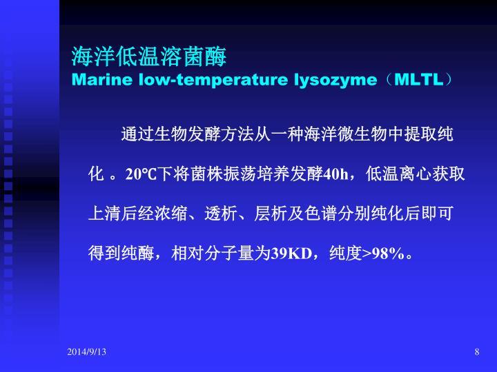 海洋低温溶菌酶