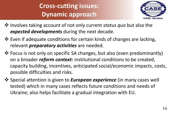 Cross-cutting issues: