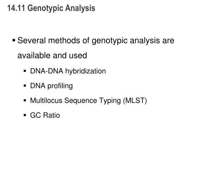 14.11 Genotypic Analysis