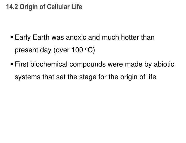14.2 Origin of Cellular Life