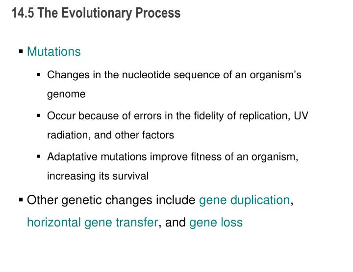 14.5 The Evolutionary Process