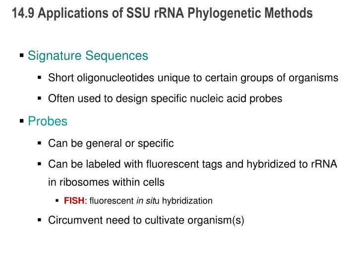 14.9 Applications of SSU rRNA Phylogenetic Methods