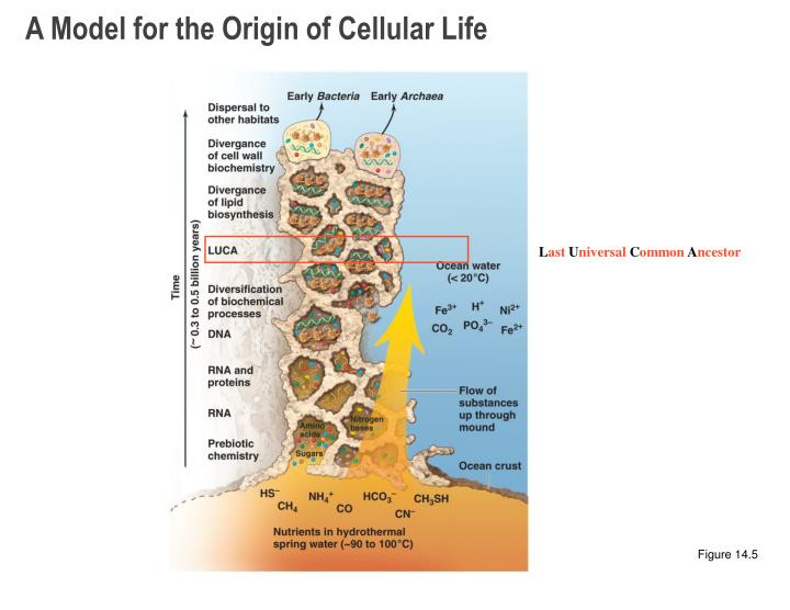 A Model for the Origin of Cellular Life