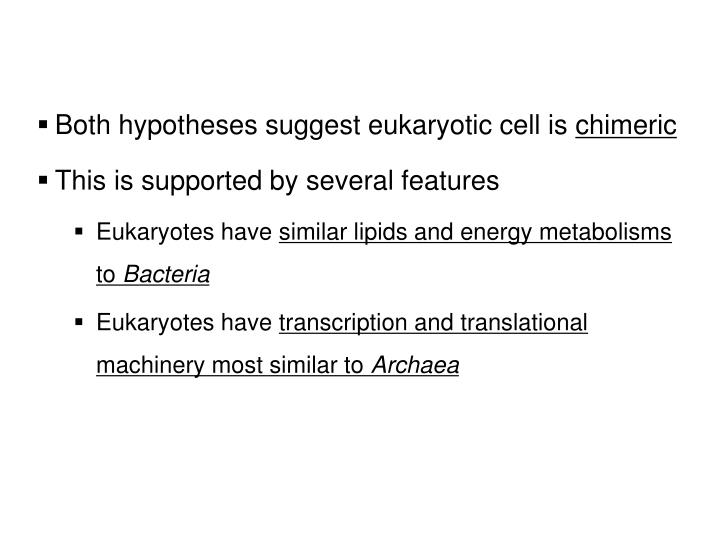 Both hypotheses suggest eukaryotic cell is