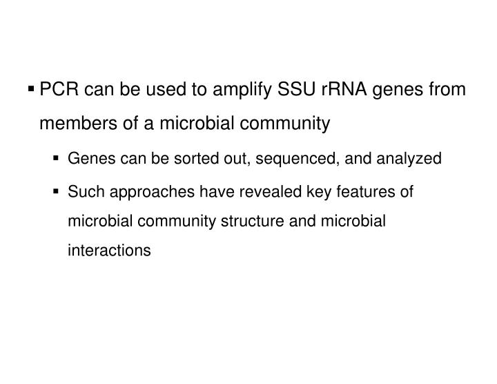 PCR can be used to amplify SSU rRNA genes from members of a microbial community