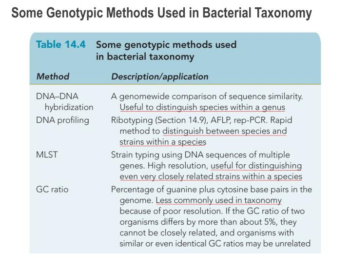 Some Genotypic Methods Used in Bacterial Taxonomy