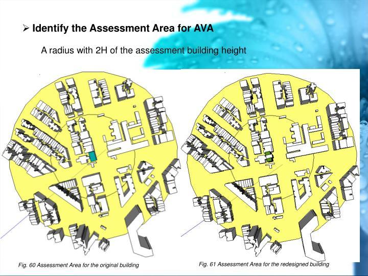 Identify the Assessment Area for AVA