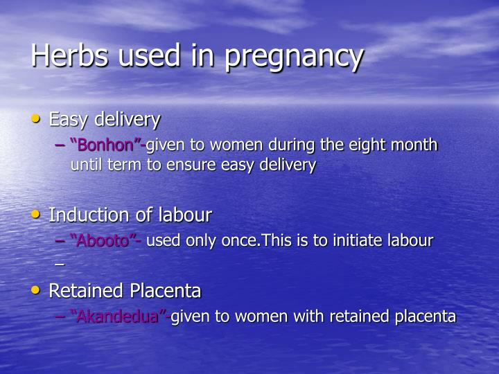 Herbs used in pregnancy