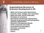 organizational structure of economic development in mi