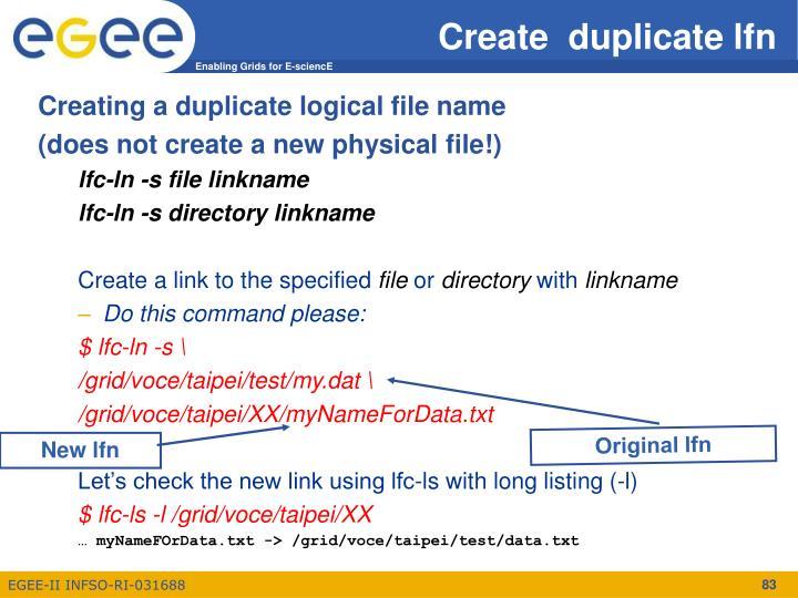 Create  duplicate lfn