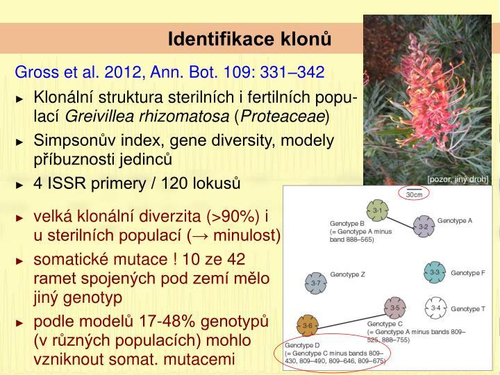 Identifikace klonů