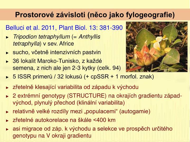 Prostorové závisloti (něco jako fylogeografie)