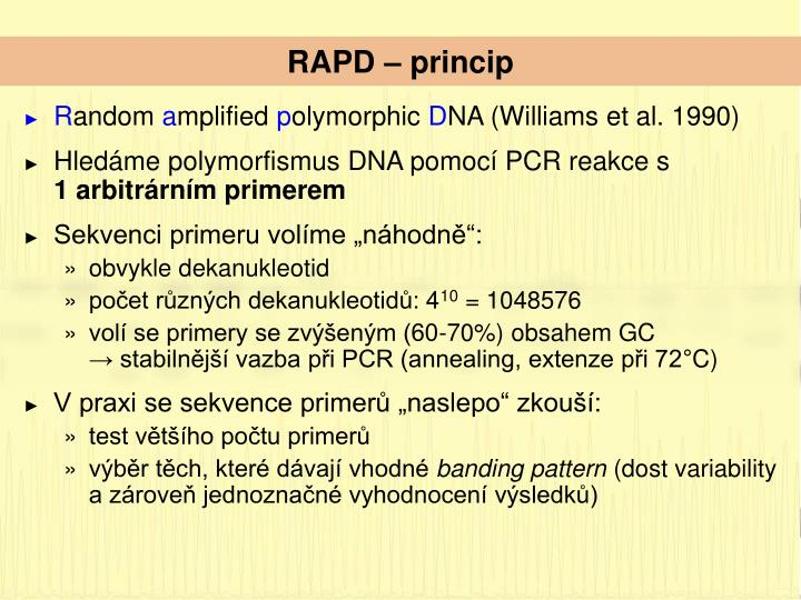 RAPD – princip