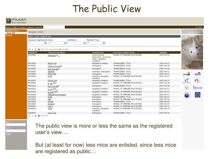The Public View