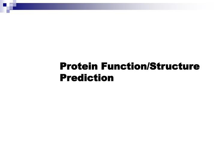 Protein Function/Structure