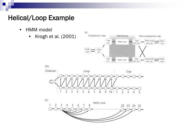 Helical/Loop Example