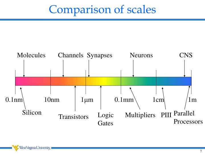 Comparison of scales