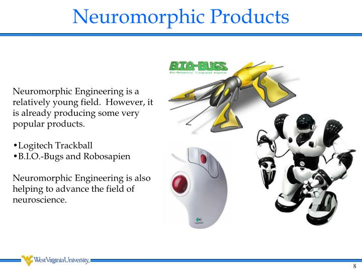Neuromorphic Products