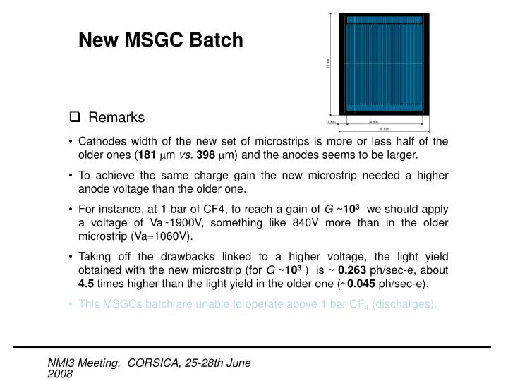 New MSGC Batch
