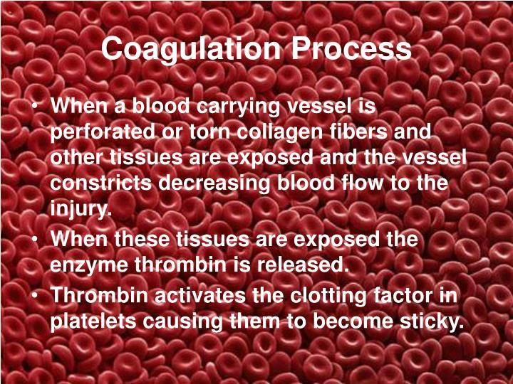Coagulation Process