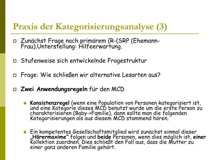 Praxis der Kategorisierungsanalyse (3)