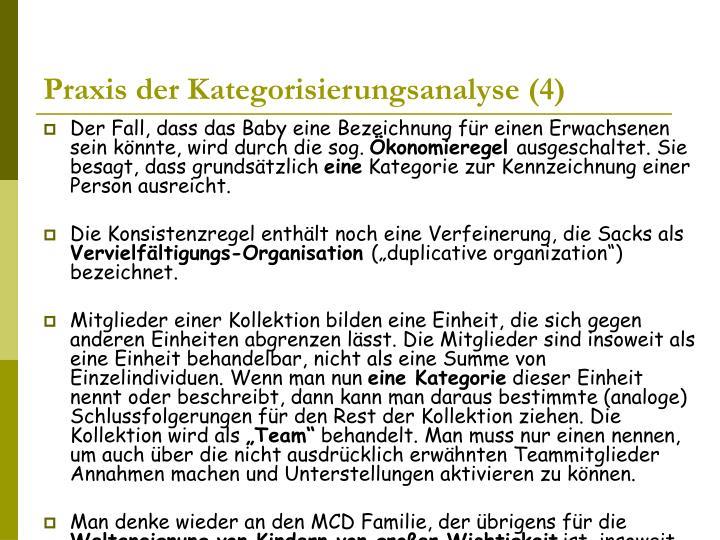 Praxis der Kategorisierungsanalyse (4)