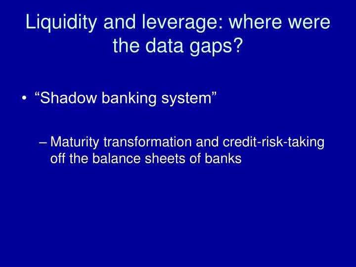 Liquidity and leverage: where were the data gaps?