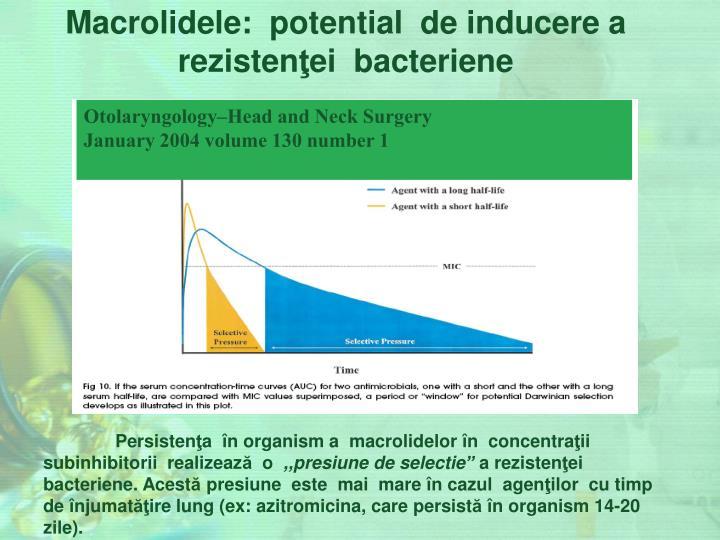 Macrolidele
