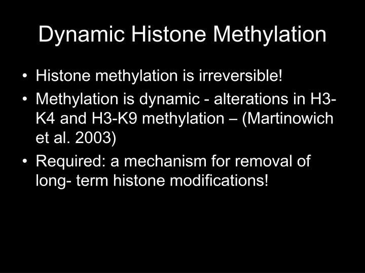 Dynamic Histone Methylation