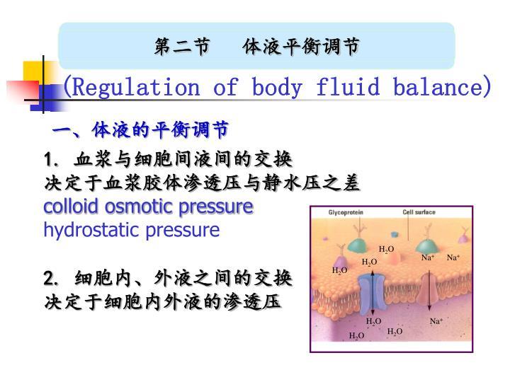 第二节   体液平衡调节