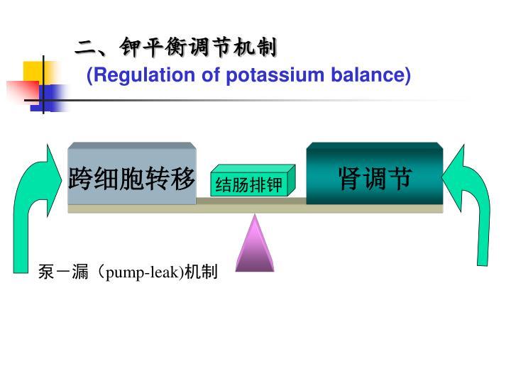 二、钾平衡调节机制