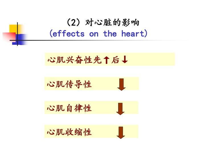 心肌传导性