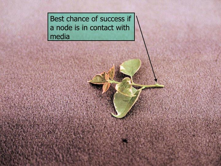 Best chance of success if a node is in contact with media