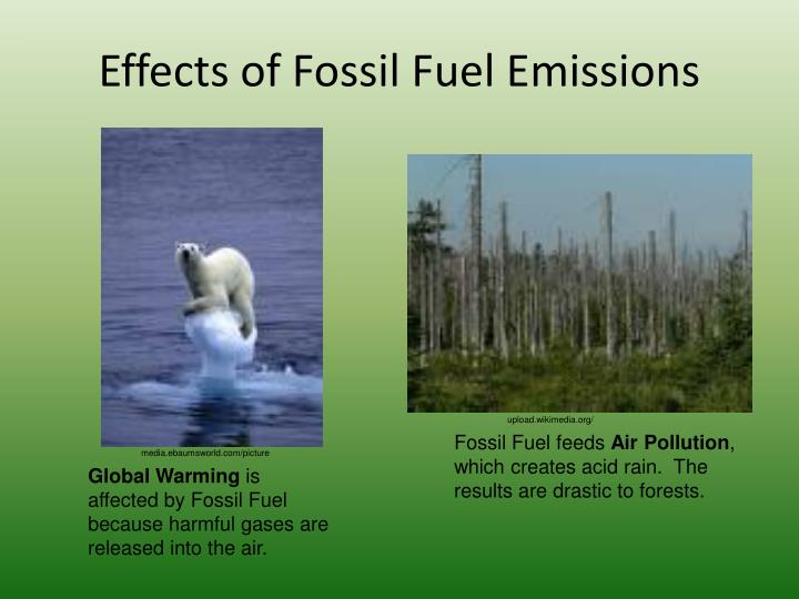 Effects of Fossil Fuel Emissions
