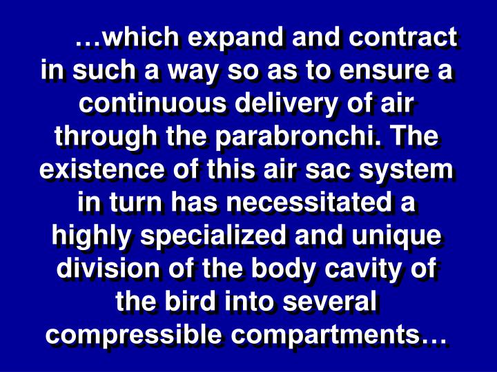 …which expand and contract in such a way so as to ensure a continuous delivery of air through the parabronchi. The existence of this air sac system in turn has necessitated a highly specialized and unique division of the body cavity of the bird into several compressible compartments…