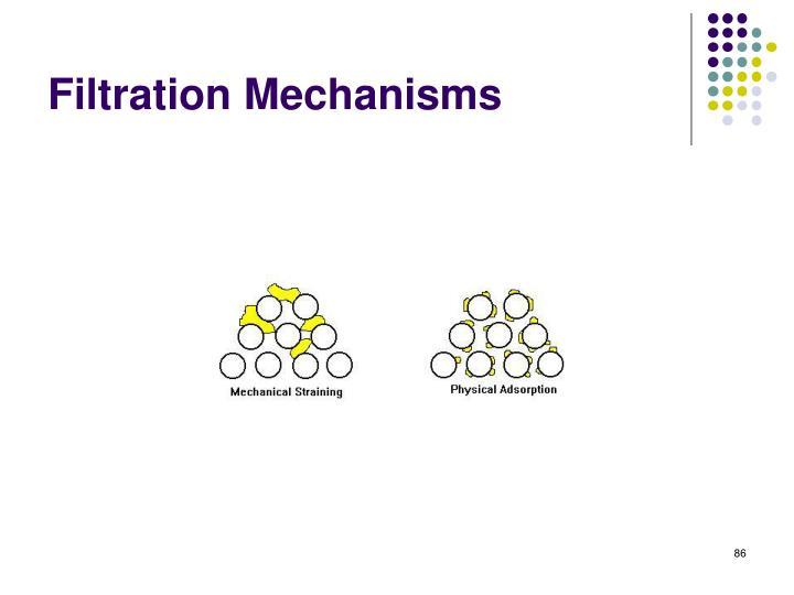 Filtration Mechanisms