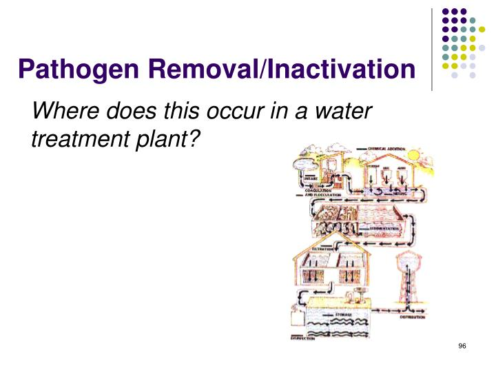 Pathogen Removal/Inactivation