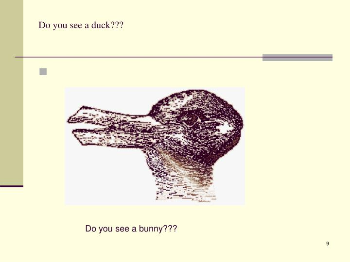 Do you see a duck???