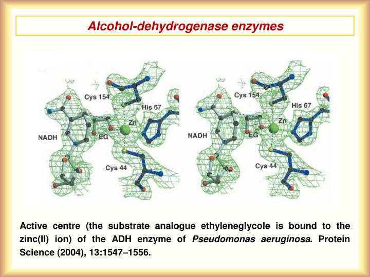 Alcohol-dehydrogenase enzymes
