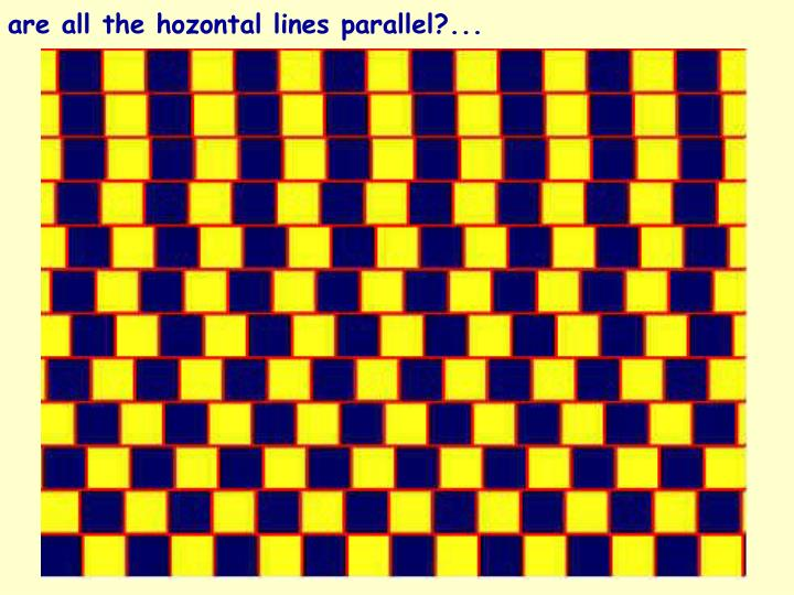 are all the hozontal lines parallel?...