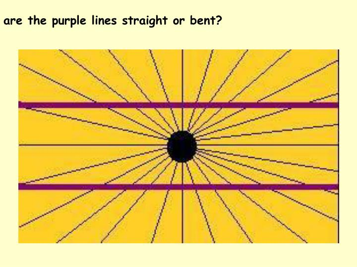 are the purple lines straight or bent?