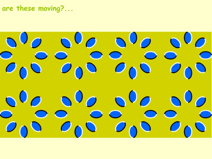 are these moving?...
