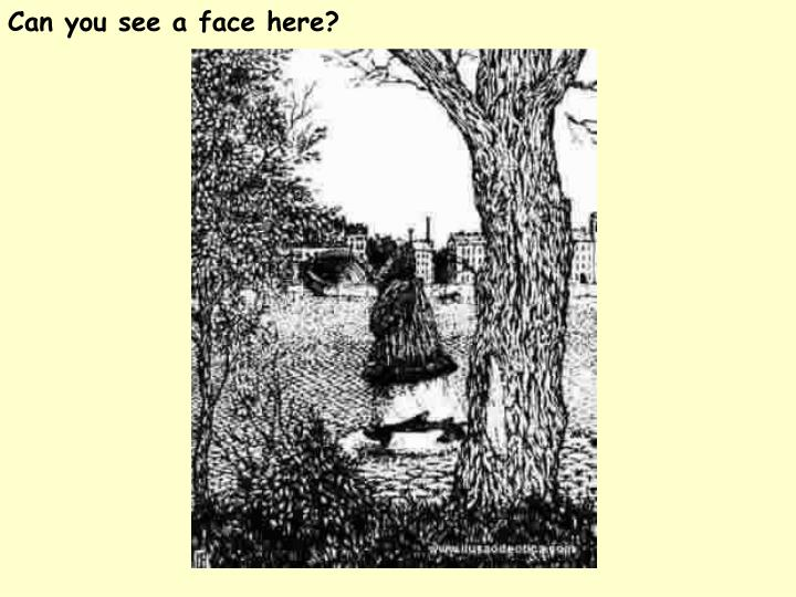Can you see a face here?