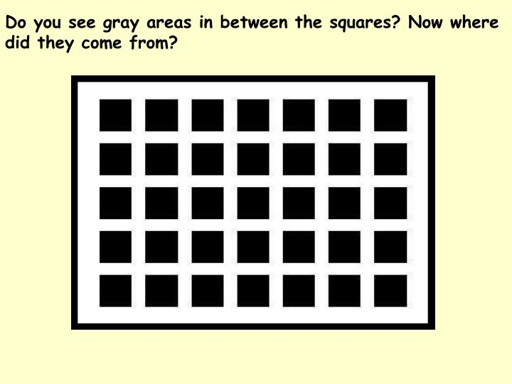 Do you see gray areas in between the squares? Now where did they come from?
